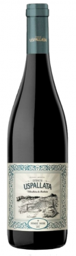 Estancia Uspallata Pinot Noir 2018